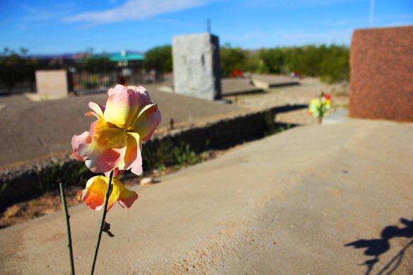 flower2lores