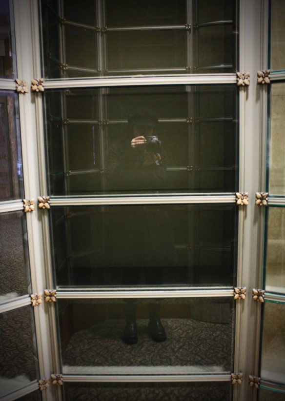 I avoid posting selfies on hObsessions, but I found this one fitting. Empty glass-front niches, waiting for cremains.