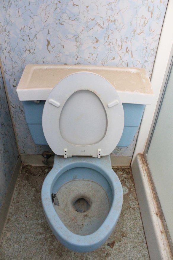 toiletlores
