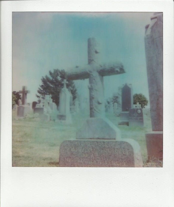 Also from Holy Cross Cemetery in Colma. -- expired Impossible 600 film